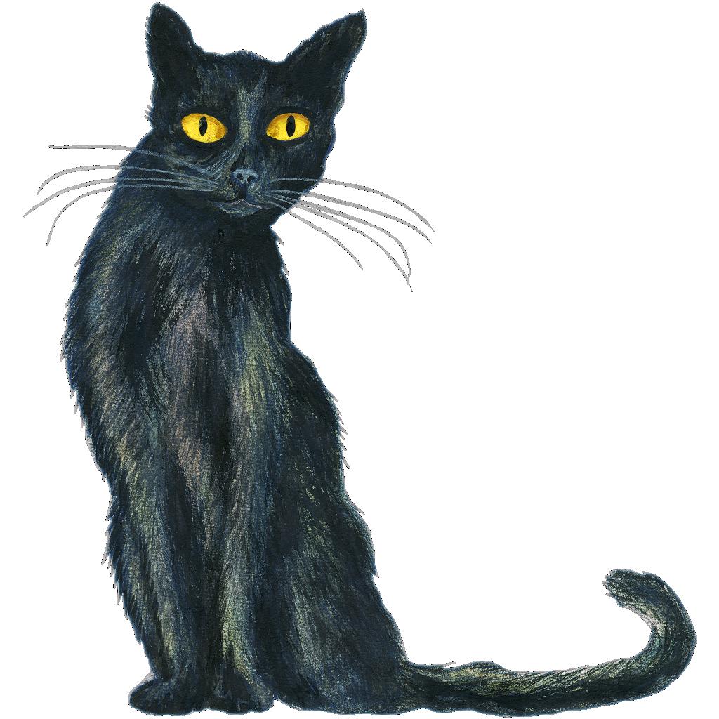 Katze mit tz, Grundwortschatz